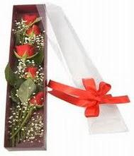 kutu içinde 5 adet kirmizi gül  Aksaray internetten çiçek siparişi