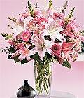 Aksaray çiçek yolla , çiçek gönder , çiçekçi   Kazablanka biçme vazoda