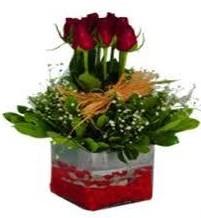Aksaray çiçek gönderme  7 adet mika yada cam vazoda gül tanzimi
