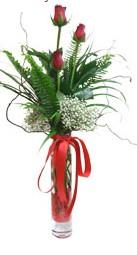 Aksaray çiçek siparişi sitesi  3 adet kirmizi gül vazo içerisinde