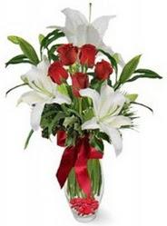 Aksaray çiçek siparişi vermek  5 adet kirmizi gül ve 3 kandil kazablanka