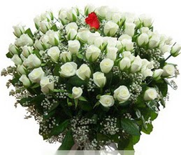 Aksaray internetten çiçek satışı  100 adet beyaz 1 adet kirmizi gül buketi