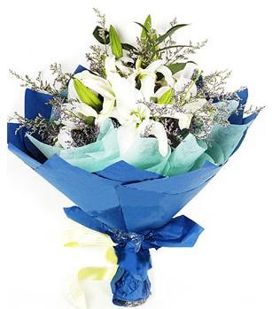Aksaray anneler günü çiçek yolla  4 adet dal kazablankadan görsel buket