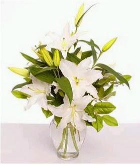 Aksaray çiçek gönderme  2 dal cazablanca vazo çiçeği