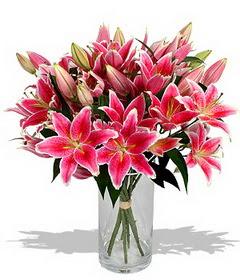 4 dal cazablanca görsel vazosu  Aksaray çiçekçi mağazası