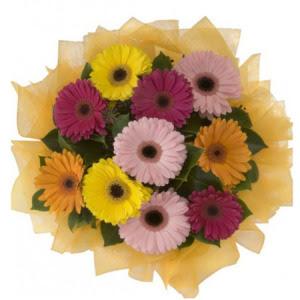 Aksaray İnternetten çiçek siparişi  11 adet karışık gerbera çiçeği buketi
