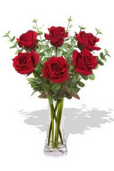 Aksaray çiçekçi mağazası  6 kırmızı gül vazosu