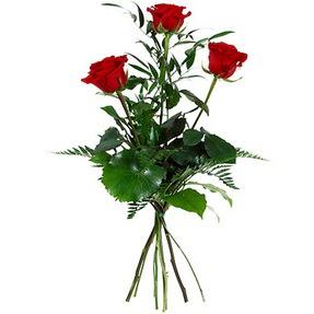 Aksaray uluslararası çiçek gönderme  3 adet kırmızı gülden buket
