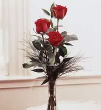 Aksaray internetten çiçek satışı  Vazoda 3 adet güzel gül