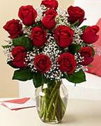 Sevgilime hediye 9 adet 1.ci kalite gül  Aksaray anneler günü çiçek yolla