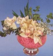 Aksaray çiçek mağazası , çiçekçi adresleri  Dal orkide kalite bir hediye