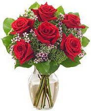 Kız arkadaşıma hediye 6 kırmızı gül  Aksaray internetten çiçek siparişi