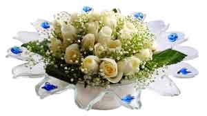 Aksaray çiçek online çiçek siparişi  11 adet Beyaz güller özel cam tanzim
