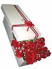 Aksaray çiçekçi telefonları  11 adet 1.kalite magnum güller