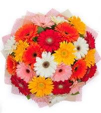 15 adet renkli gerbera buketi  Aksaray yurtiçi ve yurtdışı çiçek siparişi