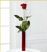 Vazo içerisinde 1 adet kırmızı gül  Aksaray internetten çiçek siparişi