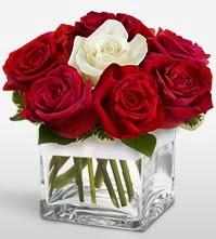Tek aşkımsın çiçeği 8 kırmızı 1 beyaz gül  Aksaray uluslararası çiçek gönderme