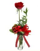 vazo içerisinde 1 adet kırmızı gül  Aksaray çiçekçi telefonları