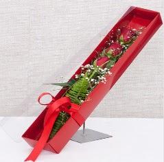 Kutu içerisinde 3 adet kırmızı gül  Aksaray online çiçek gönderme sipariş