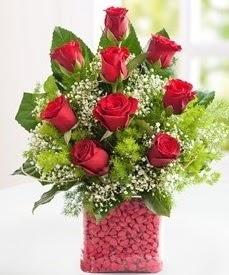 Cam içerisinde 9 adet kırmızı gül  Aksaray internetten çiçek satışı