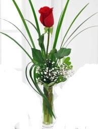 Cam içerisinde 1 kırmızı gül  Aksaray çiçek gönderme sitemiz güvenlidir