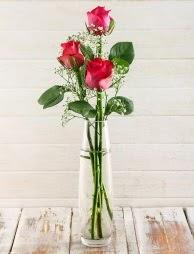 Cam içerisinde 3 kırmızı gül  Aksaray çiçek satışı