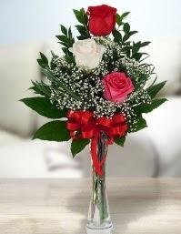 Camda 2 kırmızı 1 beyaz gül  Aksaray ucuz çiçek gönder