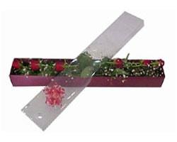 Aksaray anneler günü çiçek yolla   6 adet kirmizi gül kutu içinde