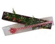 Aksaray hediye çiçek yolla  3 adet gül.kutu yaldizlidir.