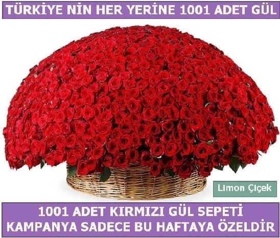 1001 Adet kırmızı gül Bu haftaya özel  Aksaray İnternetten çiçek siparişi