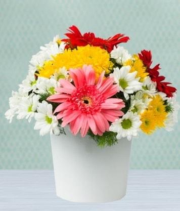 Seramik Vazoda Gelbera ve Papatya  Aksaray çiçek gönderme