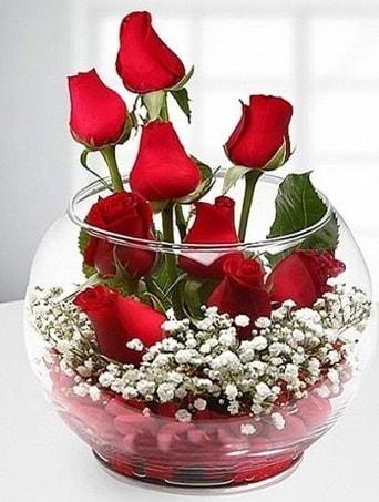 Kırmızı Mutluluk fanusta 9 kırmızı gül  Aksaray çiçek siparişi sitesi