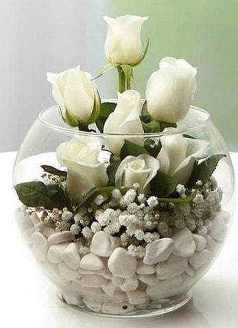 Beyaz Mutluluk 9 beyaz gül fanusta  Aksaray çiçek siparişi sitesi