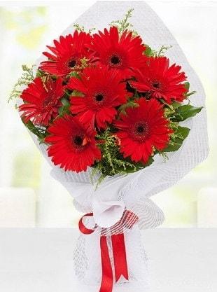 Kırmızı Gelbera Buketi  Aksaray internetten çiçek siparişi
