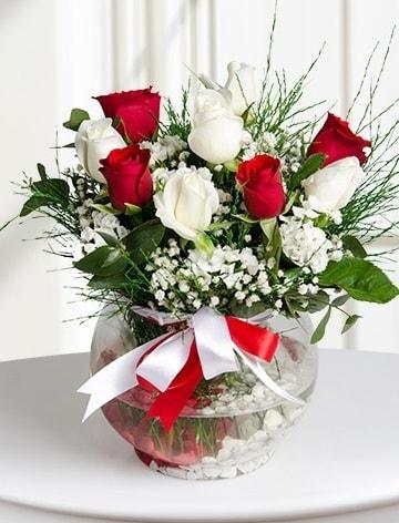 Aşk Küresi  5 beyaz 5 kırmızı gül fanusta  Aksaray internetten çiçek satışı