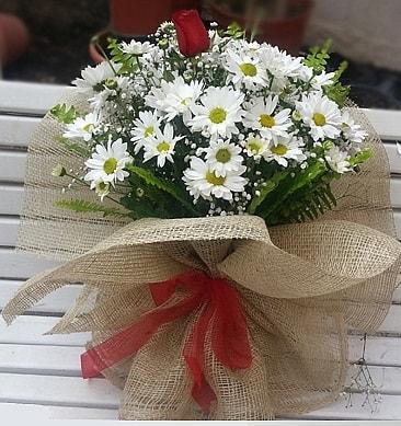 Papatya 1 adet kırmızı gül buketi  Aksaray çiçekçiler