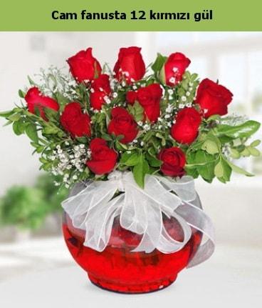 Cam içerisinde 12 adet kırmızı gül  Aksaray internetten çiçek satışı