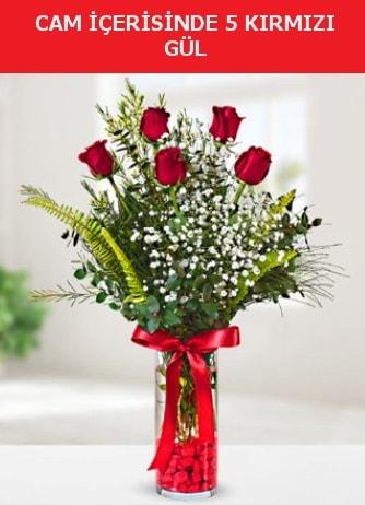 Cam içerisinde 5 adet kırmızı gül  Aksaray çiçek siparişi sitesi