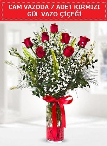 Cam vazoda 7 adet kırmızı gül çiçeği  Aksaray çiçek gönderme sitemiz güvenlidir