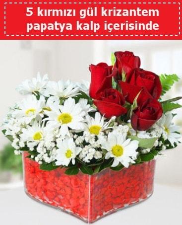 mika kalp içerisinde 5 kırmızı gül papatya  Aksaray çiçek gönderme