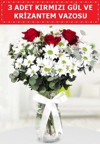 3 kırmızı gül ve camda krizantem çiçekleri  Aksaray çiçek gönderme