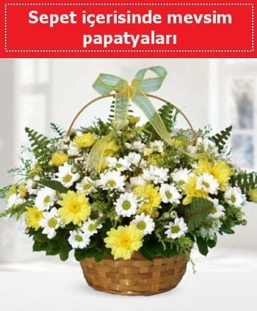 Sepet içerisinde mevsim papatyaları  Aksaray ucuz çiçek gönder