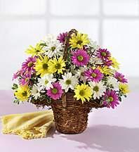 Aksaray çiçekçiler  Mevsim çiçekleri sepeti